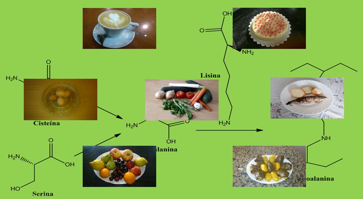 Procesos fisicoquímicos relacionados con los alimentos