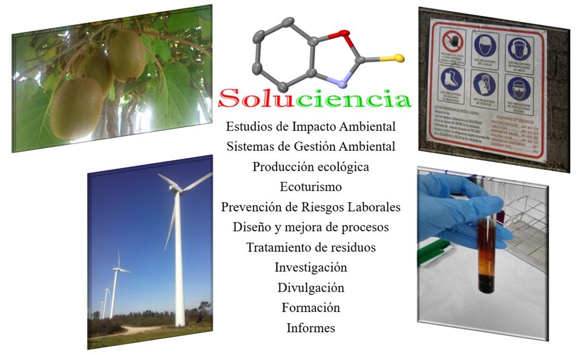 Investigación y desarrollo, gestión ambiental, prevención, formación: áreas de trabajo de Soluciencia.