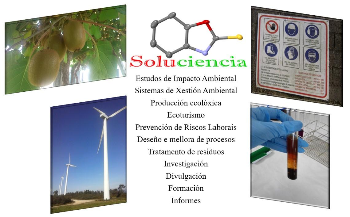 Áreas de actuación de Soluciencia: investigación, prevención de riscos, xestión ambiental, formación.